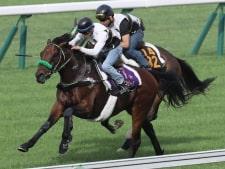 【札幌記念】ブラストワンピース反撃態勢整った ハードトレ敢行!1馬身半先着