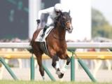 【JRA】ロジャーバローズが競走馬登録を抹消、今後は種牡馬に