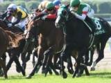 【次走】カデナは武藤雅騎手との新コンビで新潟記念へ