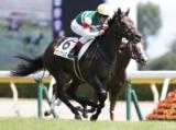 【新潟6R新馬戦】良血馬サンクテュエールが断然人気に応え快勝/JRAレース結果