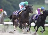 【盛岡・クラスターC】ヤマニンアンプリメが重賞連勝 菜七子キッキングは3着/地方競馬レース結果