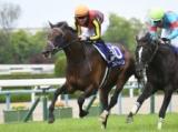 【札幌記念】フィエールマンらGI馬4頭が集結/JRAレースの見どころ