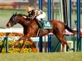 【北九州記念】モズスーパーフレア 鞍上は2歳時以来となる松若風馬騎手