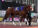 【次走】ケイティブレイブは名古屋グランプリへ ドバイWCをせん痛で出走取消