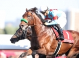 【勝負の分かれ目 札幌記念】凱旋門賞が楽しみになった日本代表2頭の走り