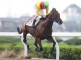 【地方競馬】浦和・小久保智調教師が通算1300勝達成 ブラックマティーニが5馬身差圧勝