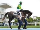 【札幌2歳S】サトノゴールド 芝コースで古馬を追走/1週前調教リポート