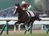 【札幌2歳S】今後を占う上で重要な一戦、中心はやはりあの馬/JRAレース展望