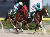 【JRA】グレンツェントが登録抹消、地方競馬に移籍予定