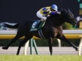 【次走】ロジクライは連覇がかかる富士Sを視野