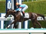 【阪神3R新馬戦】アルコレーヌが5馬身差で圧勝/JRAレース結果