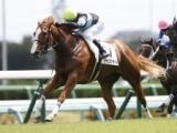 【中山5R新馬戦】シャインガーネットが人気に応えて新馬勝ち/JRAレース結果