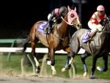 【盛岡・青藍賞】エンパイアペガサスが叩き合いを制し連覇達成/地方競馬レース結果