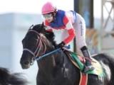 【大井・東京記念】選定馬情報が更新 ハッピースプリント、カツゲキキトキトらが回避