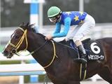 【先週のJRA抹消馬】万葉S勝ち馬トミケンスラーヴァ、メイS2着馬ストーンウェアなど