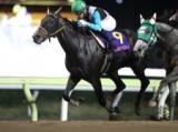 【レディスプレリュード】(大井) JRA所属の出走予定馬および補欠馬について