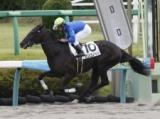 【中山3R新馬戦】ロンゴノットが9馬身差で圧勝/JRAレース結果