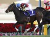 【シリウスS】タイムフライヤー、力感十分のフットワーク健在/有力馬1週前調教リポート