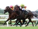 【次走】神戸新聞杯5着のユニコーンライオンは菊花賞へ