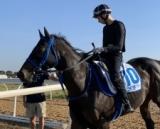 【豪・コーフィールドS】ディー騎手騎乗でスズカデヴィアスが追い切り 「非常に乗りやすく、手応えもとても良かった」