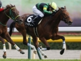 【府中牝馬S】ジョディー アメリカで良い経験を積み、重賞初Vへ/1週前トレセンリポート