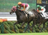 【京都5R新馬戦】6番人気テイエムフローラが突き抜けてV/JRAレース結果