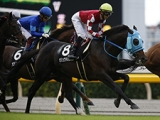 【次走】オジュウチョウサンは松岡正海騎手とのコンビでアルゼンチン共和国杯へ