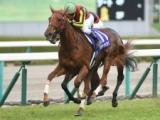 【次走】ラッキーライラックはスミヨン騎手とのコンビでエリザベス女王杯へ