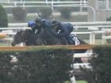 ラインベック、東京スポーツ杯2歳S3週前追い切り速報/栗東トレセンニュース