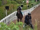 ポールヴァンドルの半弟トゥルーヴィルがC.スミヨン騎手でデビュー/関西馬メイクデビュー情報