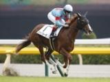 【東京5R新馬戦】スカイグルーヴが断然人気に応え5馬身差V/JRAレース結果