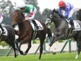 【京都5R新馬戦】トゥルーヴィルが断然人気に応えてV/JRAレース結果