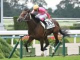 【京都6R新馬戦】ワンダーカタリナが逃げ切り新馬勝ち/JRAレース結果