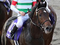 サートゥルナーリア有馬記念へ 鞍上は引き続きスミヨン