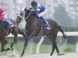 【地方競馬】高知の名牝ディアマルコが引退 グランダム・ジャパン総合優勝やNARグランプリ4歳以上最優秀牝馬などの活躍