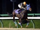 【盛岡・南部駒賞】北海道のモリノブレイクが押し切り2馬身半差快勝/地方競馬レース結果