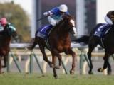 【ジャパンC】登録馬 シュヴァルグラン、レイデオロなど16頭