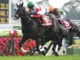 【マイルCS】登録馬 ダノンプレミアム、アルアインなど17頭