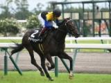 【東京スポーツ杯2歳S】アパパネの仔ラインベック ブレのないフォームで高い集中力を発揮/有力馬1週前調教リポート