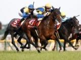 【ジャパンC】ルックトゥワイスはデットーリ騎手との新コンビ