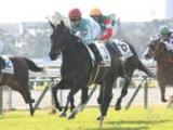 【京都5R新馬戦】デアリングタクトが突き抜け快勝/JRAレース結果