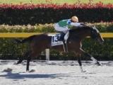 【東京6R新馬戦】ティートラップが2番手から抜け出しV/JRAレース結果
