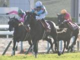 【次走】グローリーヴェイズの香港ヴァーズ鞍上はモレイラ騎手に
