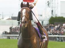 スワーヴリチャード、有馬記念に参戦 庄野師「マーフィー騎手で向かいます」