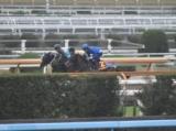 ウーマンズハート、阪神JF1週前追い切り速報/栗東トレセンニュース