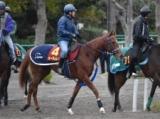 オータムレッド&マルターズディオサ、阪神JF 1週前厩舎情報/美浦トレセンニュース
