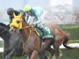 【名古屋グランプリ】(19日、名古屋) JRA所属の出走予定馬および補欠馬について