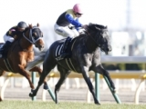 【中日新聞杯】登録馬 アイスバブル、マイネルサーパスなど16頭