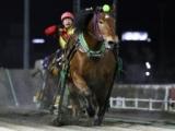 【ばんえい・ドリームエイジC】5番人気アアモンドグンシンが逃げ切り完勝/地方競馬レース結果