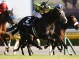 【中日新聞杯】サトノソルタスは54kg、ラストドラフトは55kg/JRA重賞ハンデ確定